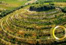 Top Wine Producer: Domaine de Cébène