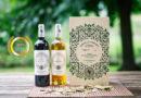 Bordeaux Vineam : A Leader in Organic Winegrowing in Aquitaine Region