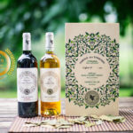 Bordeaux Vineam : A Leader in Organic Winegrowing in Aquitaine Region