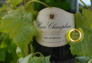 Maison HENRI CHAMPLIAU : A family winery  in the heart of the Côte Chalonnaise  region of Burgundy