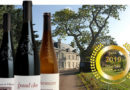 The Great Saumur Champigny Wine by Sca-Chevallier Chateau de Villeneuve