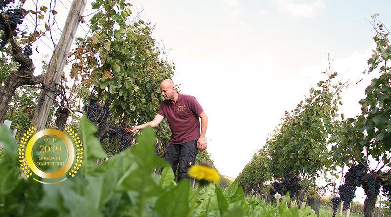Schmelzer`s Biodynamic Wines