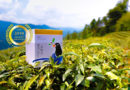 BlueMagpie Tea Social Enterprise Co. Ltd. : Taiwan Finest Tea, A Good Tea Made with Solar Terms
