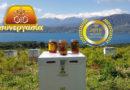 Melissokomiki Synergasia Kritis : Cretan Exceptional Honey with Special Taste