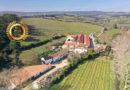 DFJ VINHOS SA : The New Portugal, Create Wines that People Enjoy
