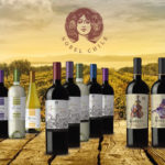 Nobel Chile SPA : Fine Wines with Excellent Terroirs, the leading exporters of premium wines
