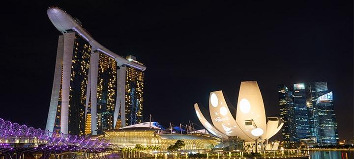 Singapore Food Imports