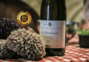 Domaine Bourillon-Dorléans : Generation of Passion in Winemaking with respects to nature