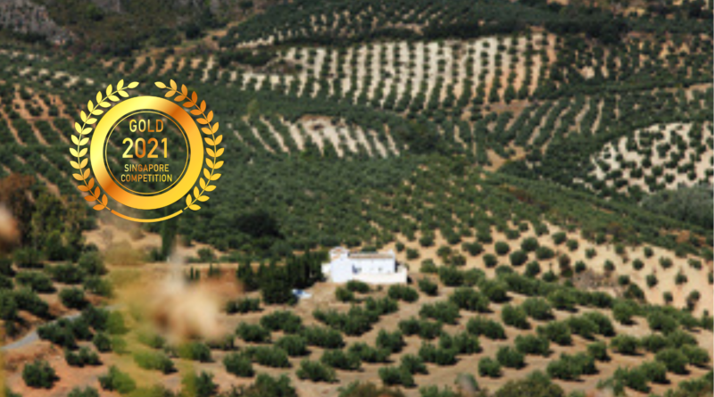 X 37 grados norte S.L. : Produce High Quality Premium Olive Oil by Singapore Newspaper