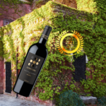 a6mani S.r.l. : Delicious wines are born from intertwining of cultures and passions