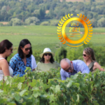 Champagne Philizot et Fils : Sparkling Champagnes of Outstanding Quality