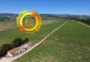 DFJ Vinhos, S.A. : The New Portugal, Highest Quality Portuguese Wines