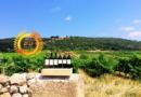 Domaine de l'Aiguelière : Wines Famous for Outstanding Quality